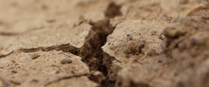 Klimaforscher fürchtet Dürre wegen Tesla-Fabrik in Brandenburg