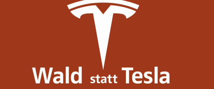 Petition: Es eilt! Tesla will 154,5 Hektar Wald roden!