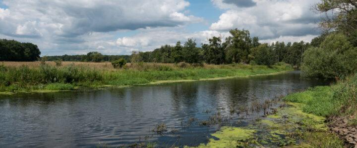 radio Dresden: Sorge um Spree – Pegel der Talsperre Spremberg fällt täglich um 4 Zentimeter